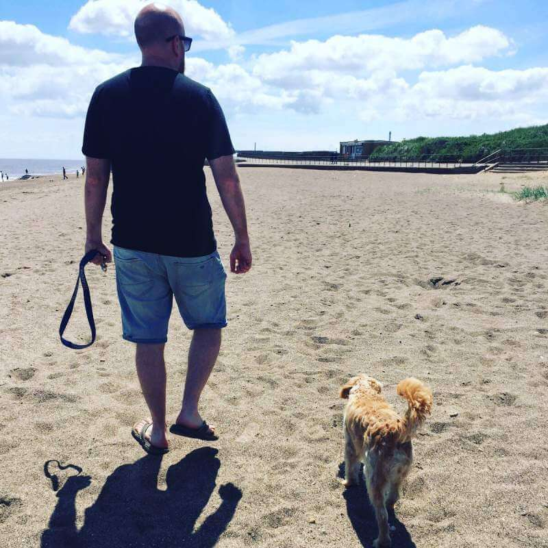Cockapoo Dog with owner walking near beach