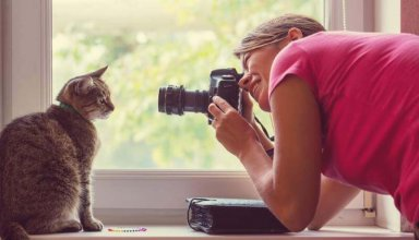cat-and-photographer